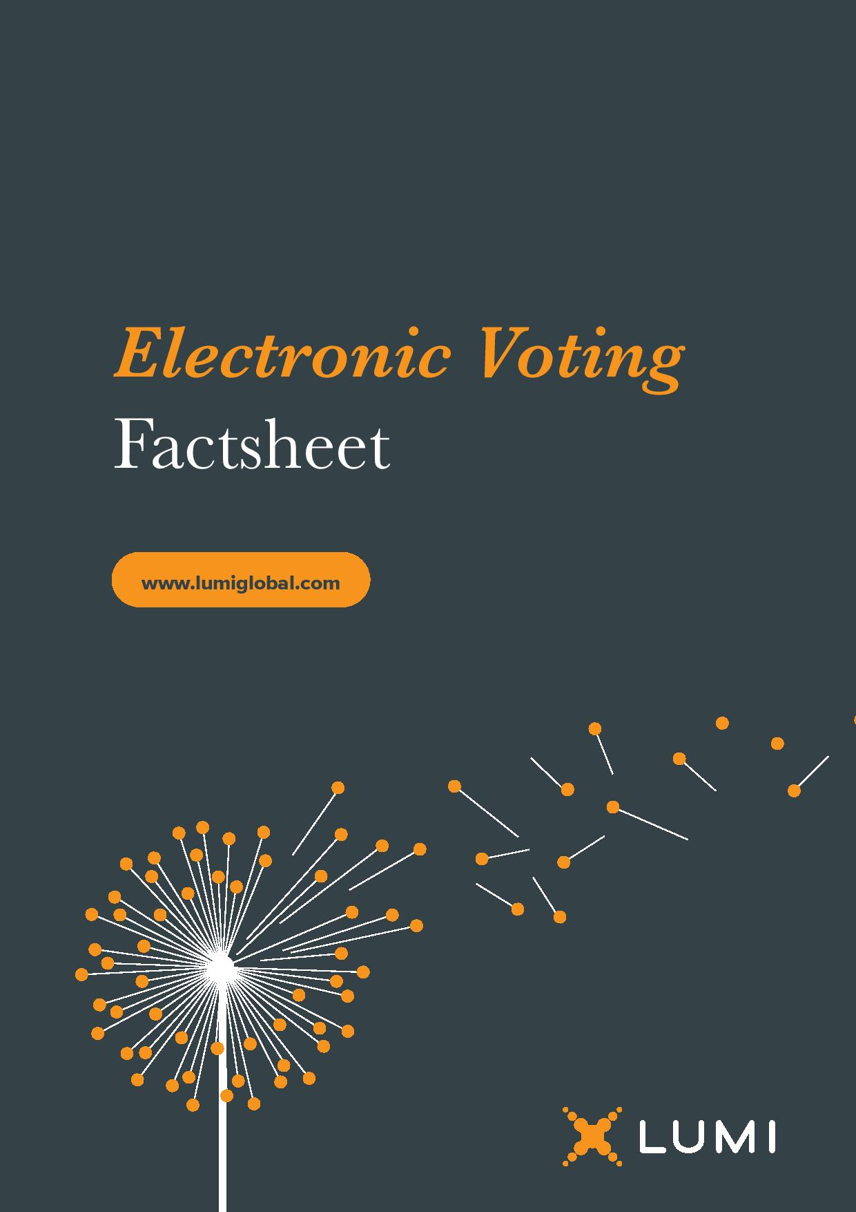 Electronic Voting Factsheet-page-001