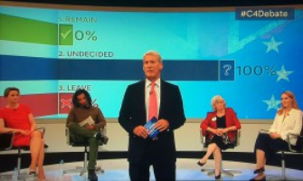 Channel 4 referendum debate uses Lumi